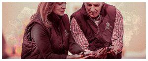 Spanish Wine Regions -celebrating 50 years